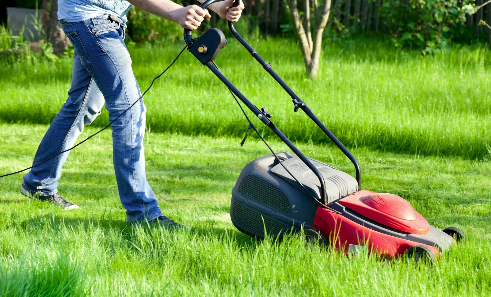 Top Rasen mähen - Wann und wie oft Sie Rasen mähen sollten &GN_69